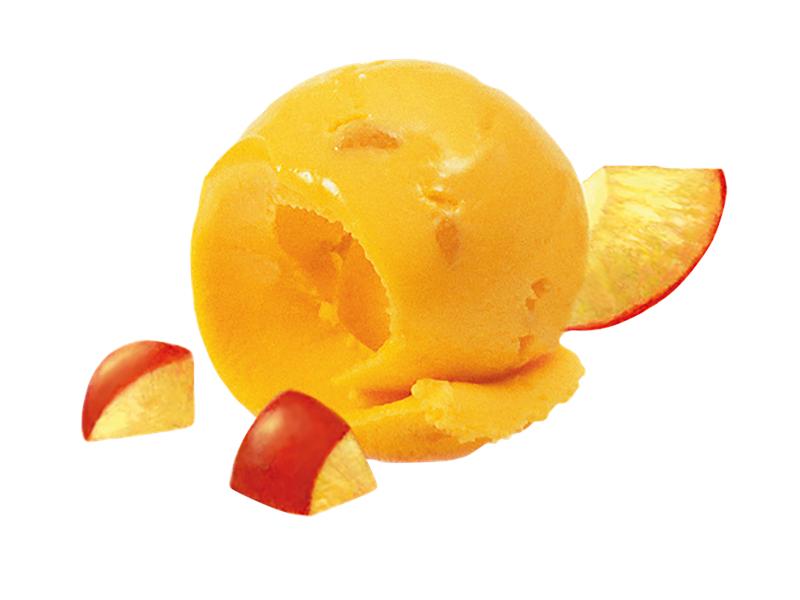 10501-mangosorbet-5-liter.png